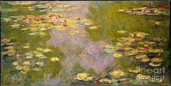 Wall Art - Painting - Water Lilies by Celestial Images