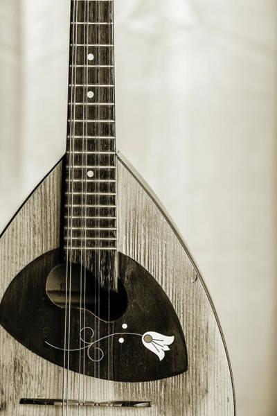 Photograph - 54.1845 Framus Mandolin by M K Miller
