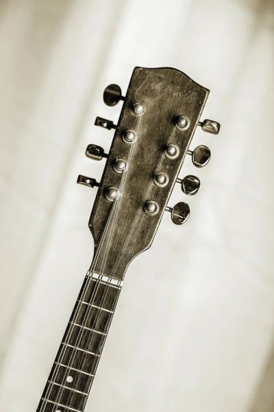 Photograph - 55.1845 Framus Mandolin by M K Miller