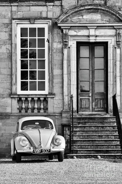 Wall Art - Photograph - 56 Beetle by Tim Gainey