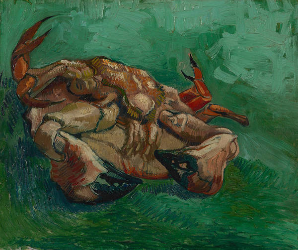 Arthropods Painting - A Crab On Its Back by Vincent van Gogh