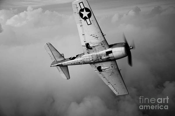 Head And Shoulders Photograph - A Grumman F6f Hellcat Fighter Plane by Scott Germain