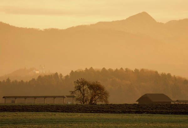 Wall Art - Photograph - Alpine Sunrise by Ian Middleton