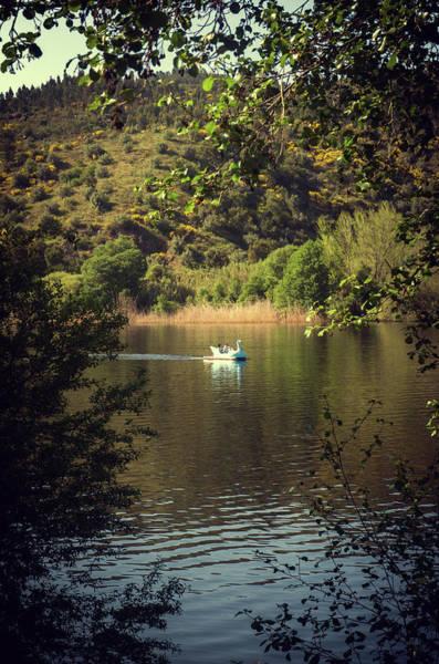 Swan Boats Photograph - Belver Landscape by Carlos Caetano