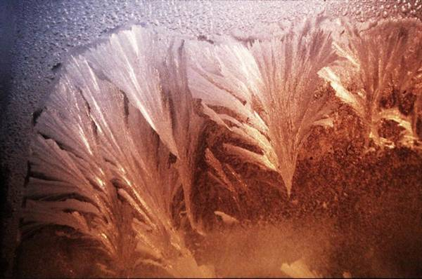 Fractal Digital Art - Earth by Maye Loeser