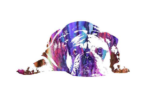 English Bulldog Painting - English Bulldog by Art Galaxy