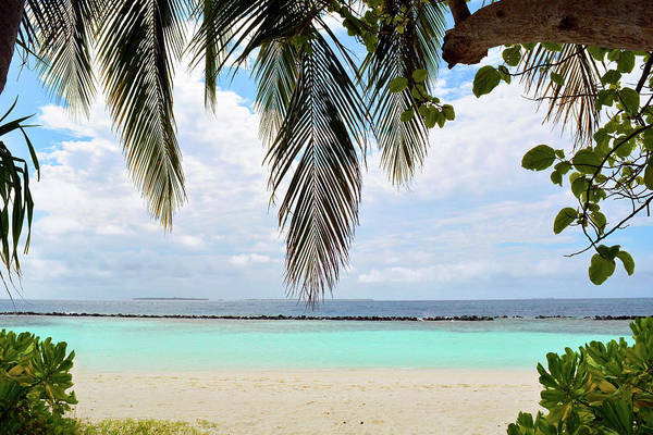 Photograph - Exotic Island In The Maldives With Clear Blue Water by Oana Unciuleanu