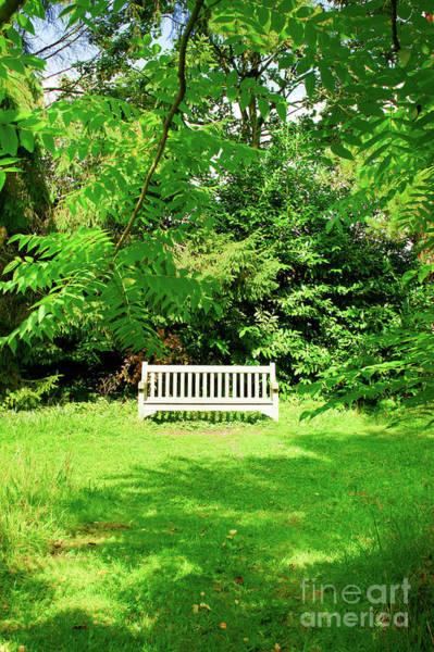Wall Art - Photograph - Garden Bench by Tom Gowanlock