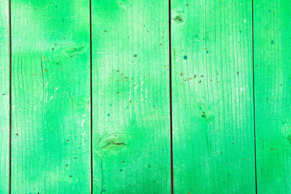 Wall Art - Photograph - Green Wood by Tom Gowanlock