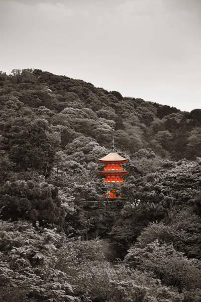 Photograph - Kyoto by Songquan Deng