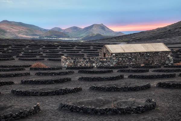 Lanzarote Photograph - La Geria - Lanzarote by Joana Kruse