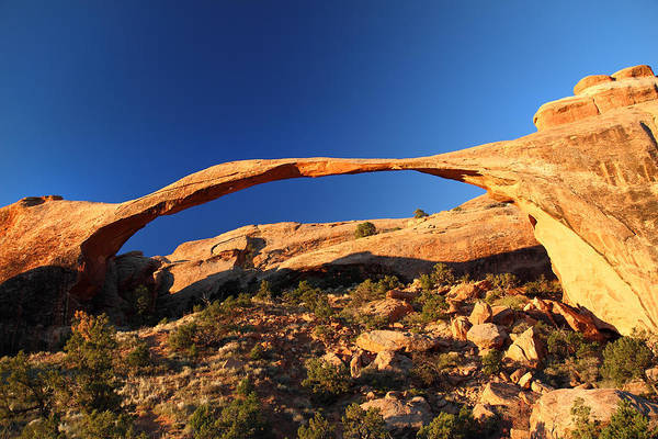 Photograph - Landscape Arch In Arches National Park by Pierre Leclerc Photography