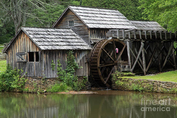 Photograph - Mabry Mill by Fred Stearns