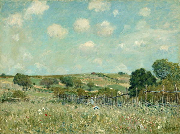 Painting - Meadow  by Alfred Sisley
