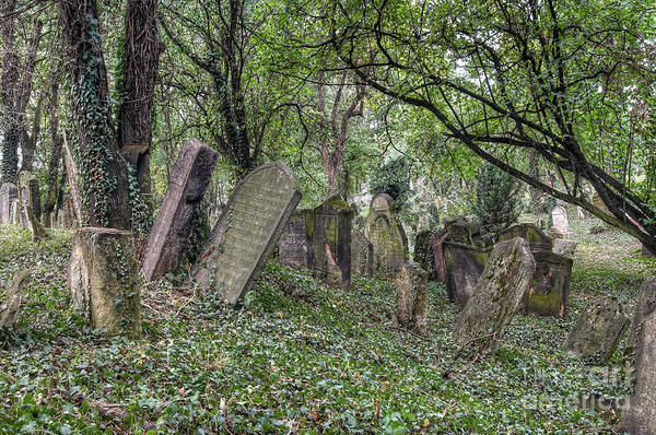 Wall Art - Photograph - Old Jewish Cemetery by Michal Boubin