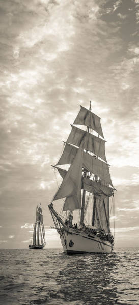 Photograph - Tall Ships Vertical Panoramic by Cliff Wassmann
