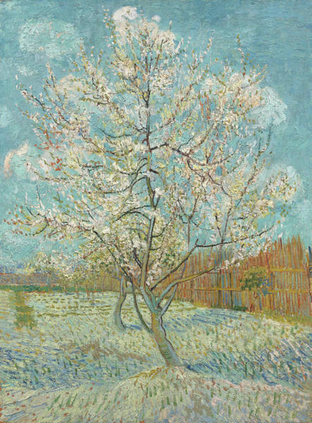 Almond Painting - The Pink Peach Tree by Vincent van Gogh