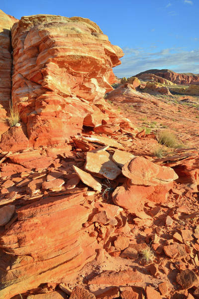 Photograph - Valley Of Fire by Ray Mathis