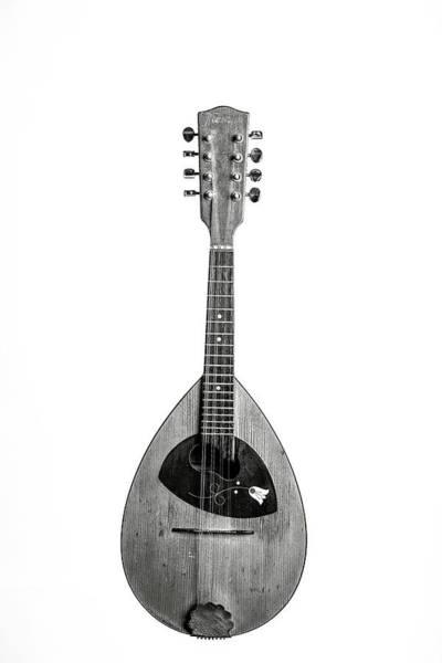 Photograph - 62.1845 Framus Mandolin by M K Miller