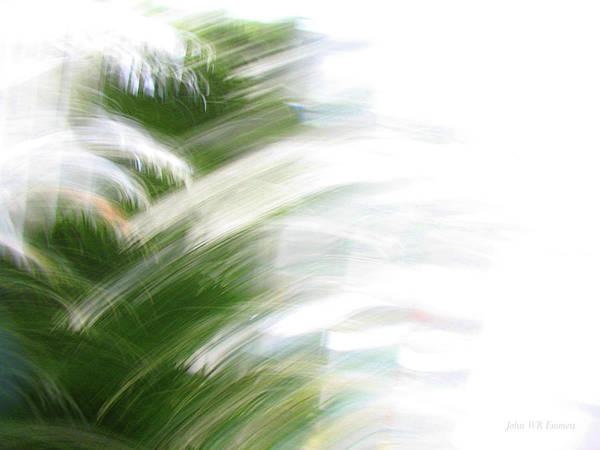 Photograph - Evergreen 527 by John Emmett
