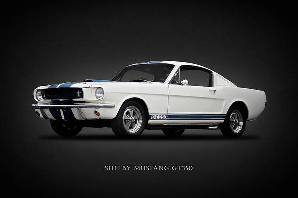 Wall Art - Photograph - 65 Shelby Gt350 by Mark Rogan