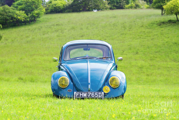 Wall Art - Photograph - 66 Beetle by Tim Gainey