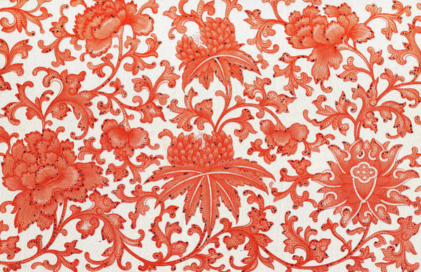 Boho Chic Drawing - White And Red Flowers Pattern Art - Boho Style Illustration by Wall Art Prints