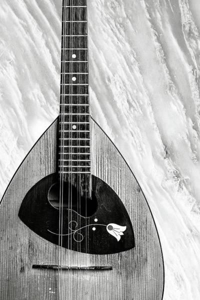 Photograph - 66.1845 Framus Mandolin by M K Miller