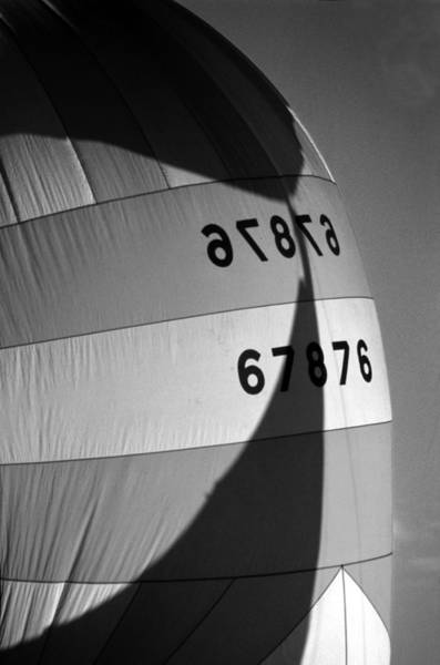 Photograph - Spinaker Shadow by David Shuler