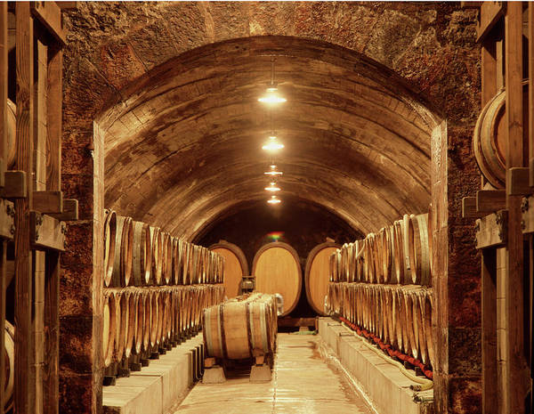 Photograph - 6b6319 Aging Cellars  by Ed Cooper Photography