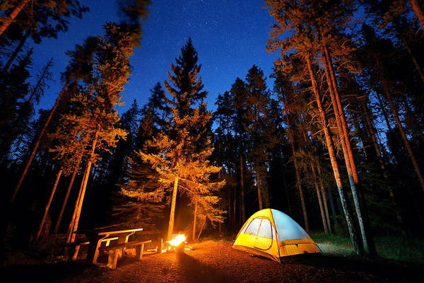 Photograph - Banff National Park by Songquan Deng
