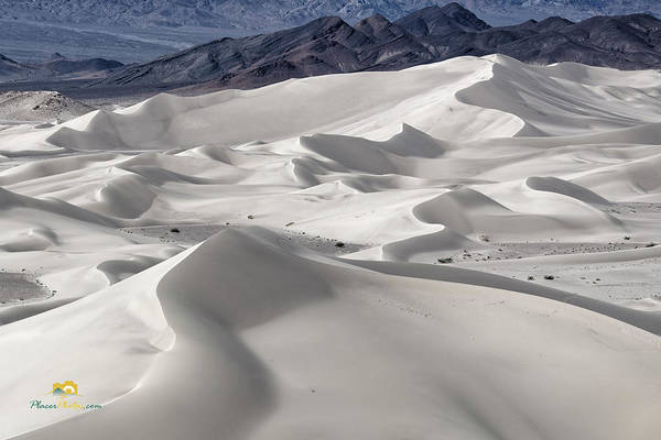 Photograph - Dumont Dunes 8 by Jim Thompson