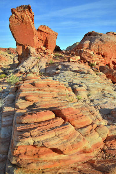 Photograph - Early Morning In Valley Of Fire by Ray Mathis