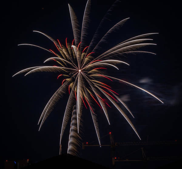 Photograph - Fireworks 2015 Sarasota 30 by Richard Goldman