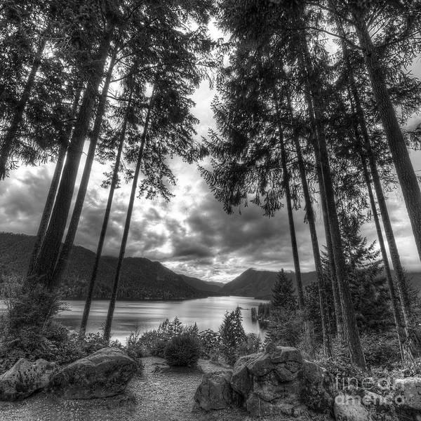 Wall Art - Photograph - Lake Cushman by Twenty Two North Photography