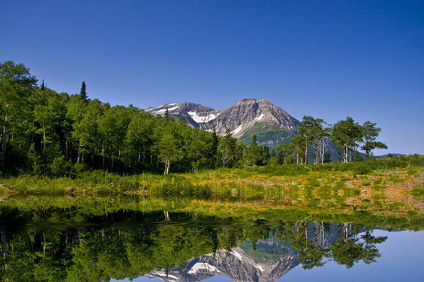 Photograph - Mountain Reflections by Mark Smith