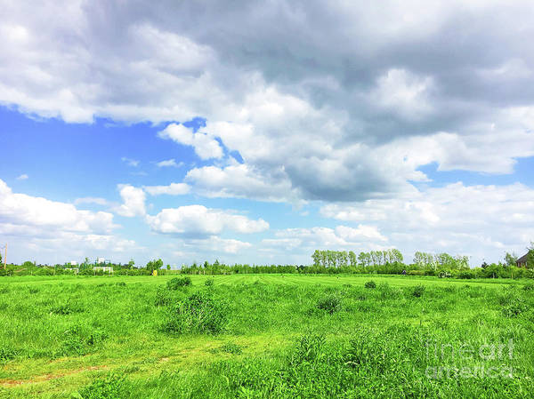 Wall Art - Photograph - Suffolk Rural Scene by Tom Gowanlock