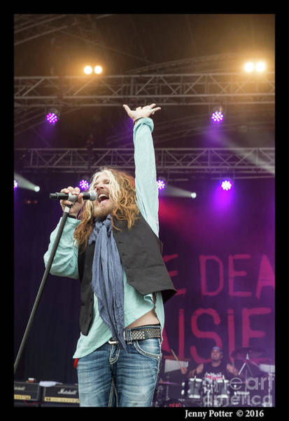 Photograph - The Dead Daisies  by Jenny Potter
