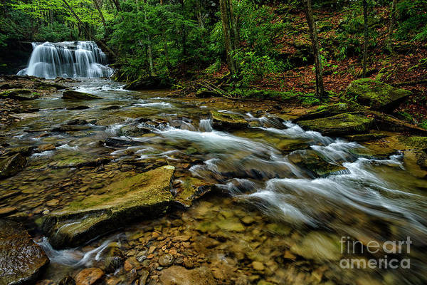 Photograph - Upper Falls Holly River by Thomas R Fletcher