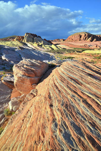 Photograph - Waves Of Color In Valley Of Fire by Ray Mathis