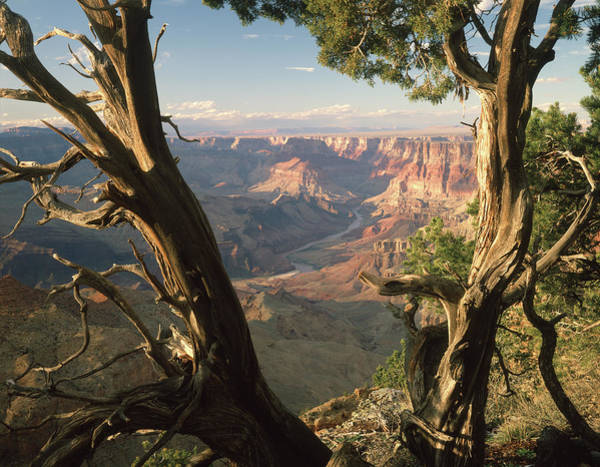 Photograph - 713260h Grand Canyon From Desert View by Ed Cooper Photography