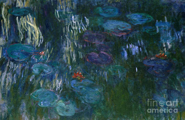 Wall Art - Painting - Water Lilies by Claude Monet