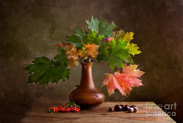 Green Berry Photograph - Autumn by Nailia Schwarz