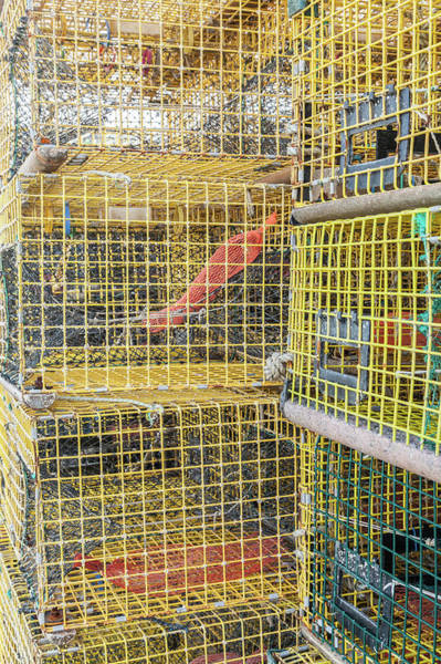 Point Pleasant Photograph - Lobster Pots Stacked  by Erin Cadigan