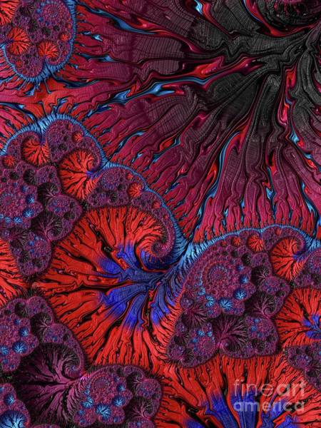 Kaleidoscope Digital Art - Mystic Universe, Fractals, Patterns And Designs by Raphael Terra