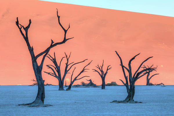 Wall Art - Photograph - Sossusvlei - Namibia by Joana Kruse