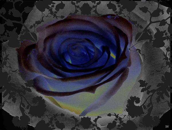 Darkside Photograph - Wedding Rose Collection  by Debra     Vatalaro
