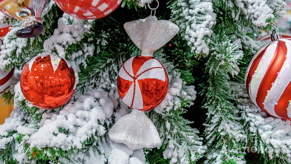 Wall Art - Photograph - Christmas Decorations 2 by Viktor Birkus