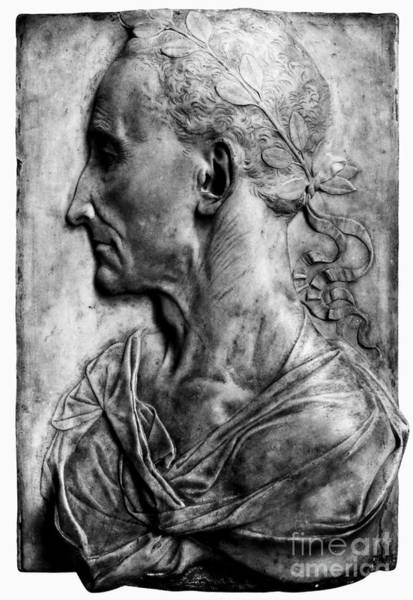 Photograph - Julius Caesar (100-44 B.c.) by Granger