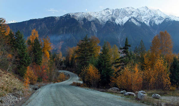 Photograph - 9000 Foot Mount Currie In Autumn by Pierre Leclerc Photography